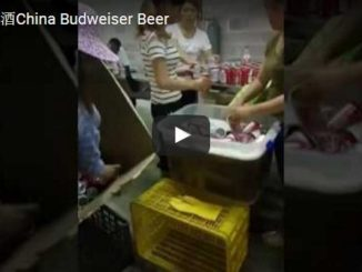 china budweiser beer video screen capture