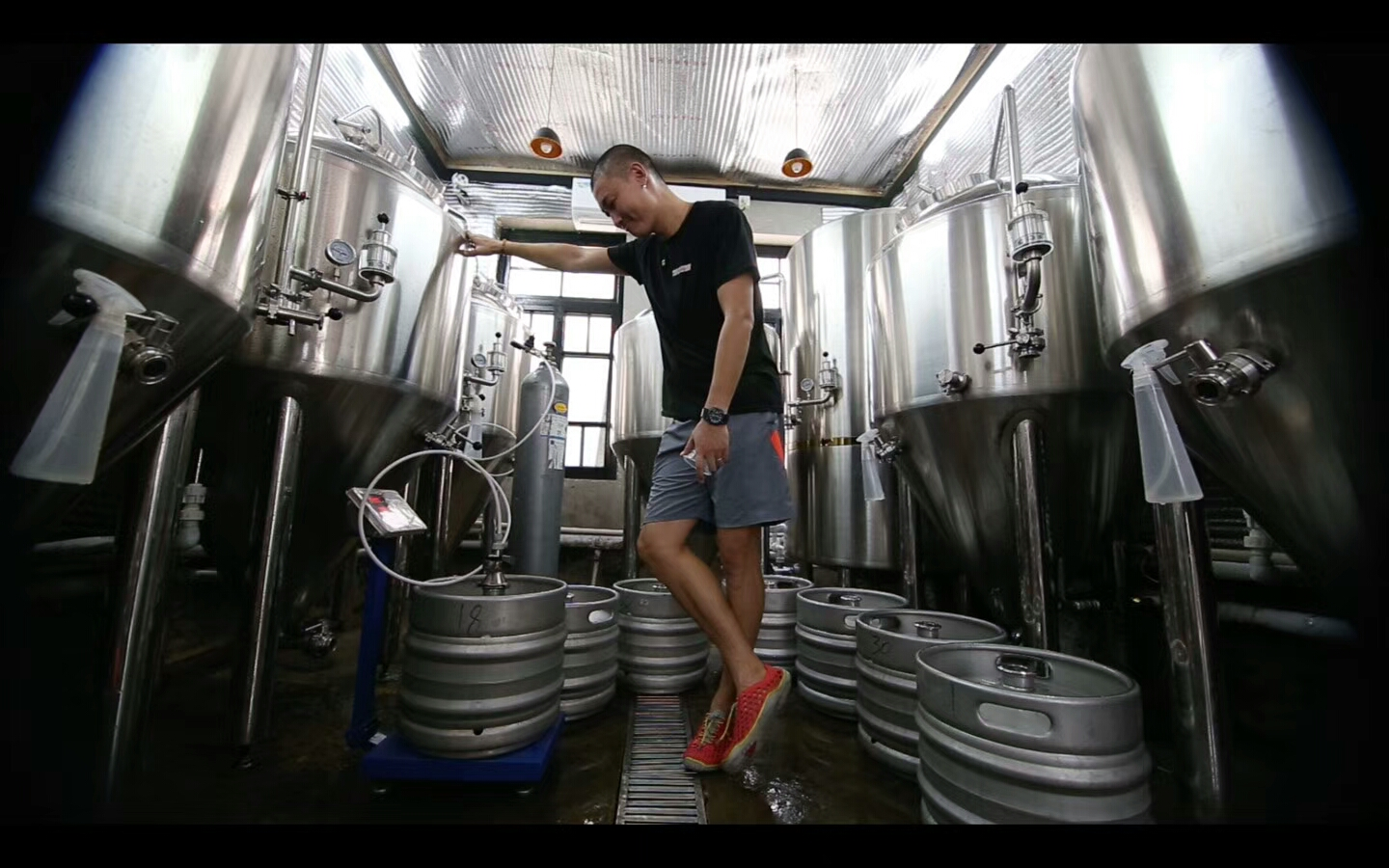 steve wang we brewery tianjin 1